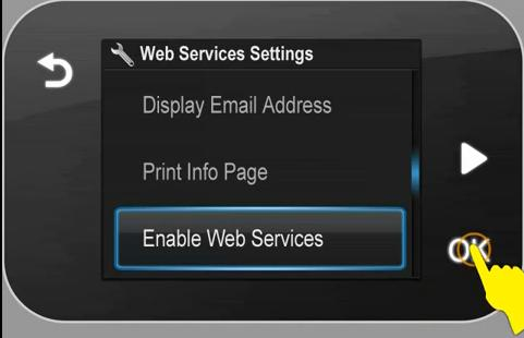 panel_D110_Enable_WebServices.JPG