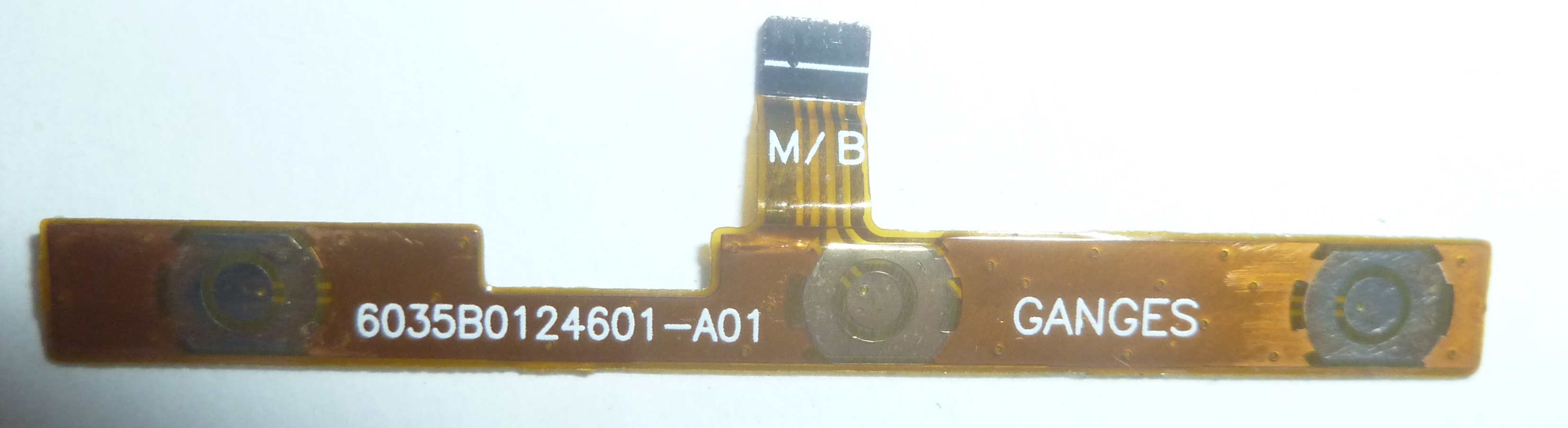 P1210935.JPG